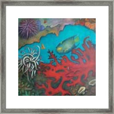 Red Reef Framed Print by Lynn Buettner