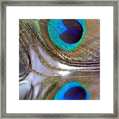 Reflections Of A Feather Framed Print by Angela Murdock