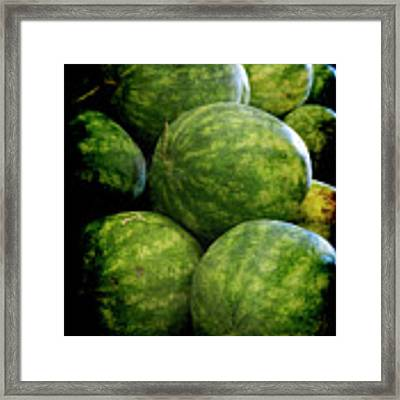 Renaissance Green Watermelon Framed Print by Jennifer Wright