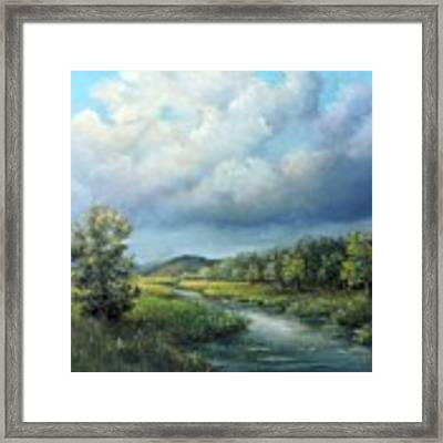 River Landscape Spring After The Rain Framed Print by Katalin Luczay