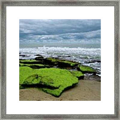 Seaside Framed Print by Ralph Jones