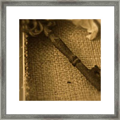 Skeleton Key Framed Print by Ann E Robson