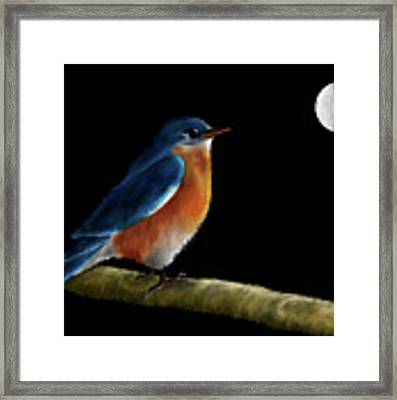 Spellbound By The Light Of The Silvery Moon Framed Print by Lois Bryan