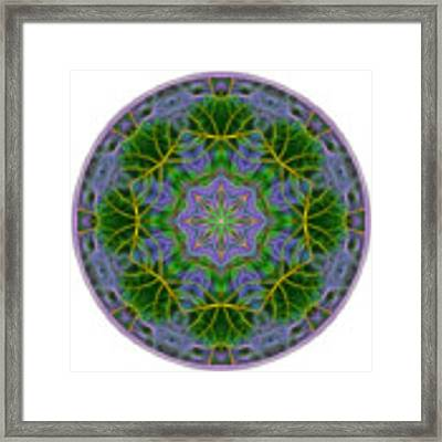 Spring Bloom Colors Mandala Framed Print by Beth Sawickie