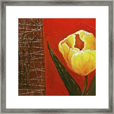 Spring Messenger Framed Print by Phyllis Howard