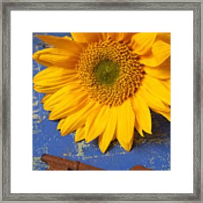 Sunflower And Skeleton Key Framed Print