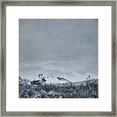 Land Shapes 38 Framed Print by Priska Wettstein
