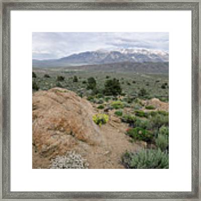 Take Me To The Mountains Framed Print by Margaret Pitcher
