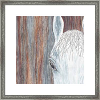 Tanglewood Framed Print by Kathryn Riley Parker
