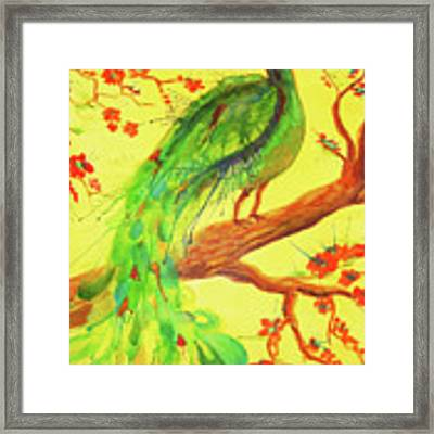 The Auspicious Peacock Framed Print by Angelique Bowman