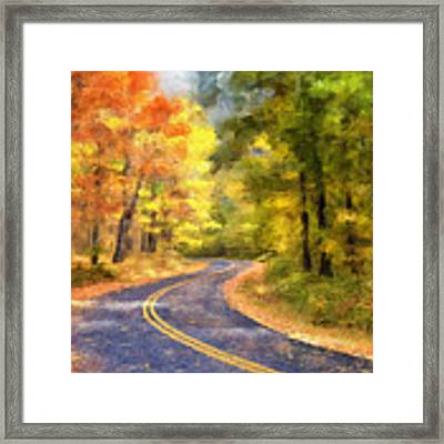 The Sunny Side Of The Street Framed Print by Lois Bryan