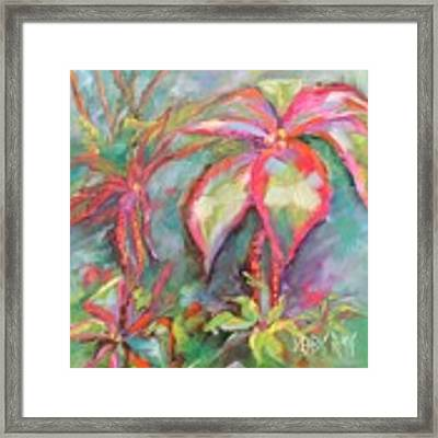 Tropical Beauty Framed Print by Wendy Ray