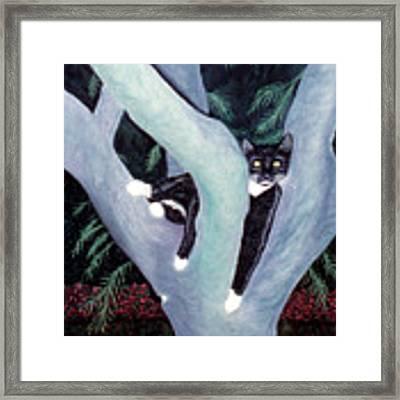 Tuxedo Cat In Mimosa Tree Framed Print by Karen Zuk Rosenblatt