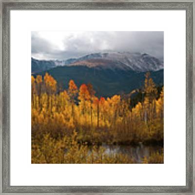 Vivid Autumn Aspen And Mountain Landscape Framed Print by Cascade Colors