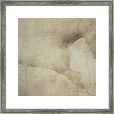 Wall With Picture Of A White Horse Framed Print by Jan Keteleer