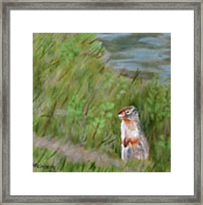 Watching The Tourists Framed Print by Linda Feinberg