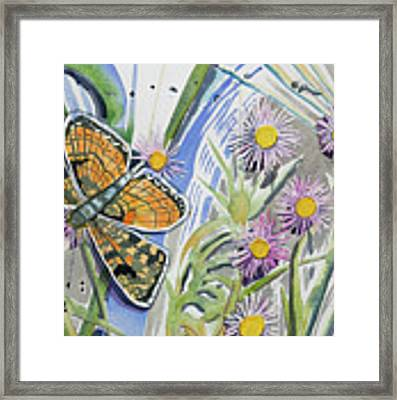 Watercolor - Checkerspot Butterfly With Wildflowers Framed Print by Cascade Colors