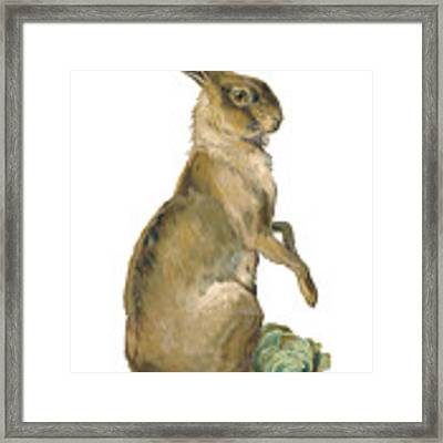 Wild Hare Framed Print by ReInVintaged
