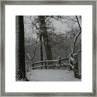 Winter Fence Trail Framed Print by Dylan Punke