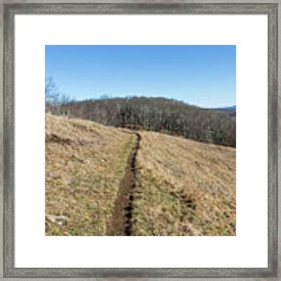 Winter Trail - December 7, 2016 Framed Print by D K Wall