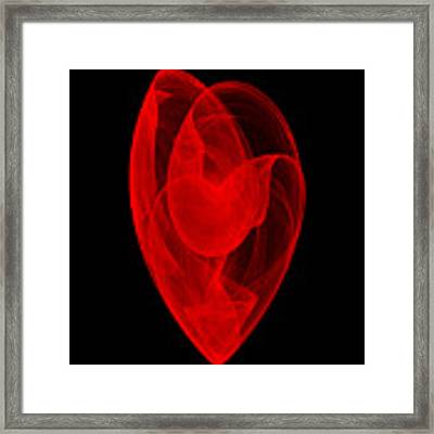 Within Shell II Framed Print by Robert Krawczyk