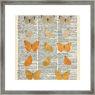 Yellow Butterflies Over Dictionary Book Page Framed Print by Anna W