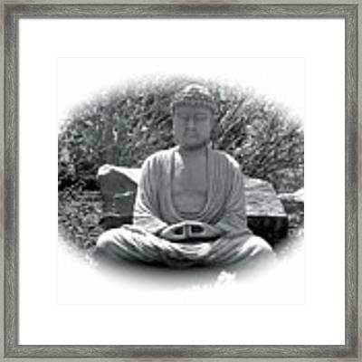 Zen Framed Print by Michael Lucarelli