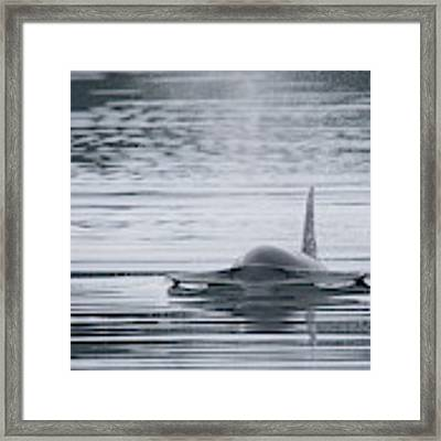 Bow Wave Framed Print by Randy Hall