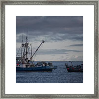 Elora Jane Framed Print by Randy Hall