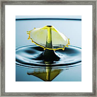 Water Drop Framed Print by Nicole Young
