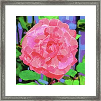 A Rose With Heart Framed Print by Deborah Boyd