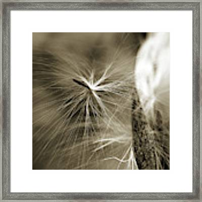 Almost Framed Print by Michelle Wermuth