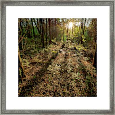 Appalachia Morning Framed Print by Scott Cordell