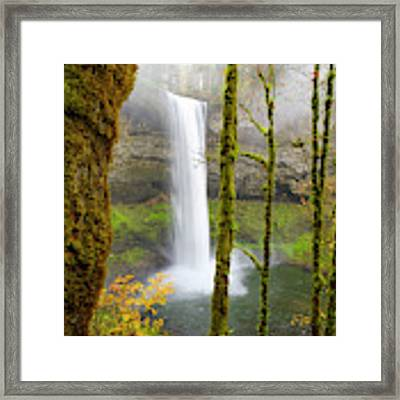 Autumn At Silver Falls State Park Framed Print by Nicole Young