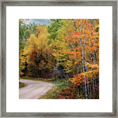 Autumn Buck  Framed Print by Patti Deters