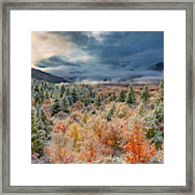 Autumn Grandeur Framed Print by Leland D Howard