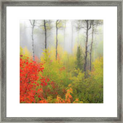 Autumn Silence Framed Print by Leland D Howard