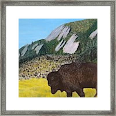 Back From The Brink Framed Print by Kevin Daly