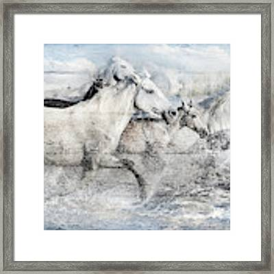 Band Of Brothers Framed Print by Debra and Dave Vanderlaan