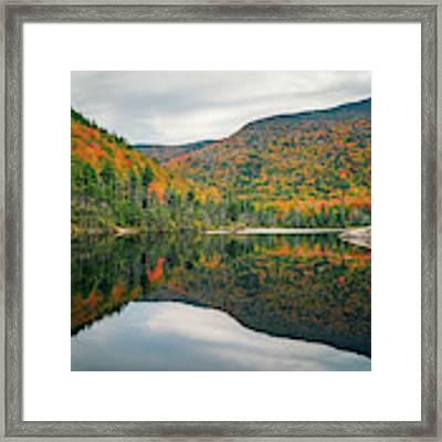 Beaver Pond Framed Print by James Billings