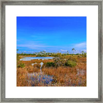 Blue Sky And Marsh Framed Print by Tom Claud