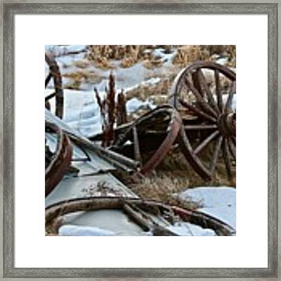 Boneyard Framed Print by Ann E Robson