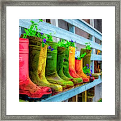 Boots Galore Framed Print by Debra and Dave Vanderlaan