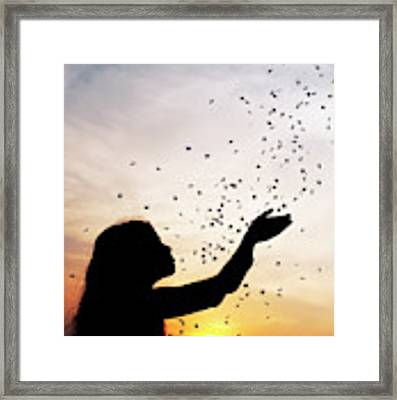 Catching Stars Framed Print by Tim Gainey