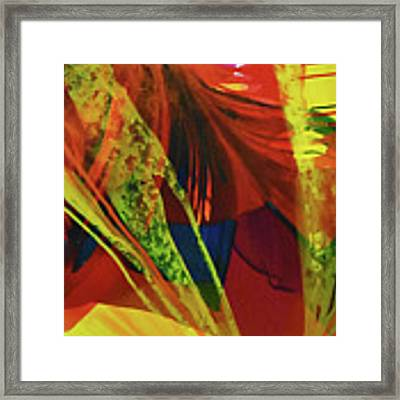 Coalition Framed Print by Kate Word