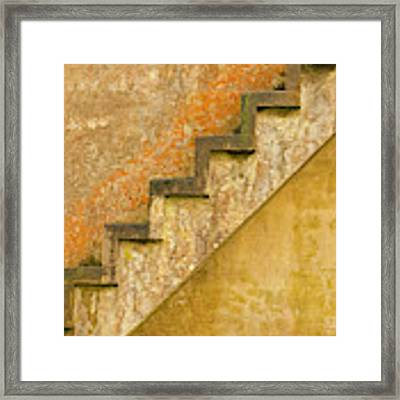 Composit Of Three Images Framed Print by Dee Browning