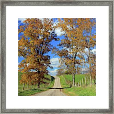 Country Road Through Fall Trees Framed Print by Angela Murdock