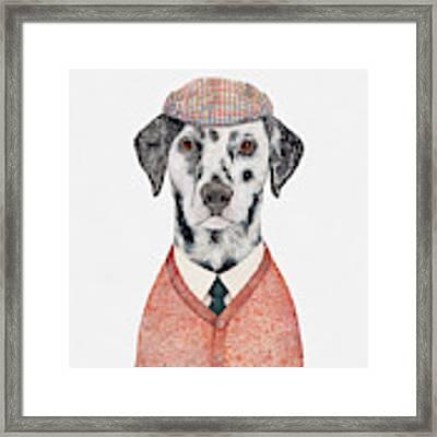 Dalmatian Framed Print by Animal Crew