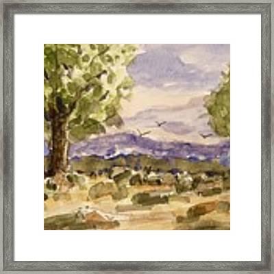 Desolate Framed Print by Barry Jones