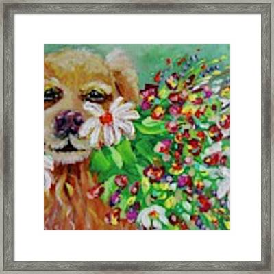Dog With Flowers Framed Print by Jacqueline Athmann